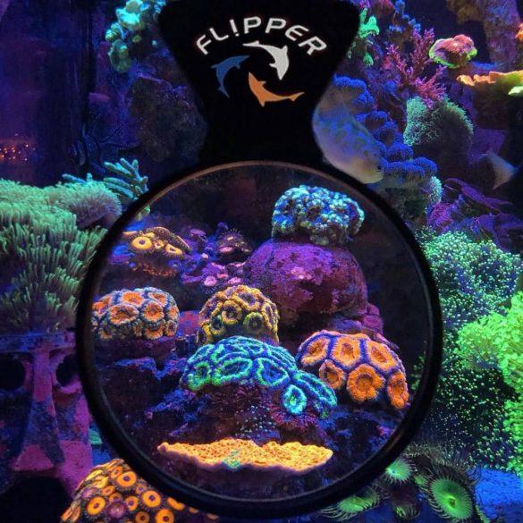 """Flipper Deep See Orange Filter 5"""" - Naracs színű lencse MAX nagyítóhoz"""