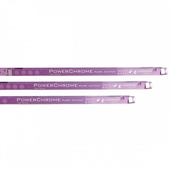 Giesemann Pure Actinic 24W