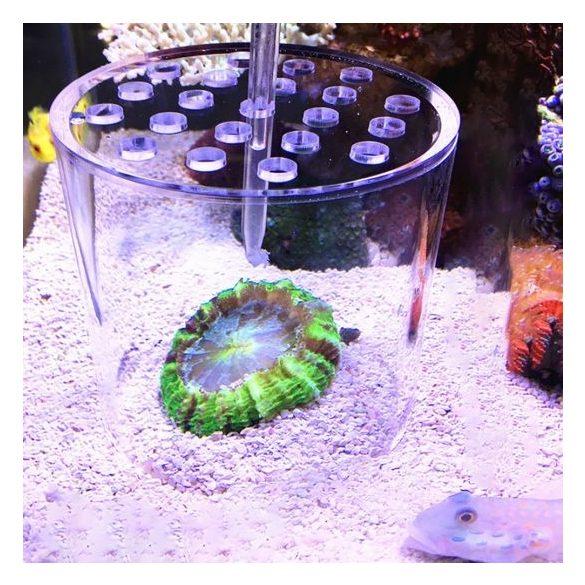 Koralletető pohár - Ø 8cm